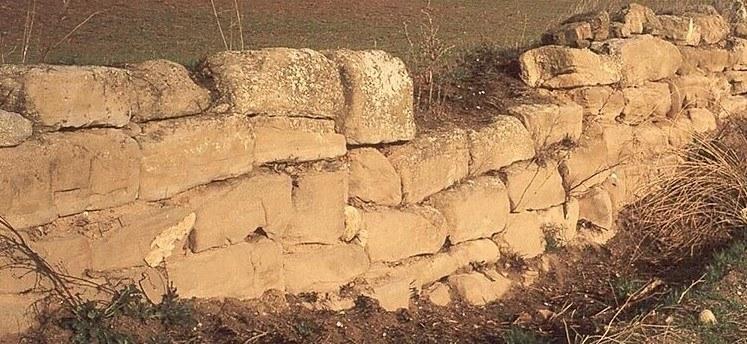 imatge de la secció